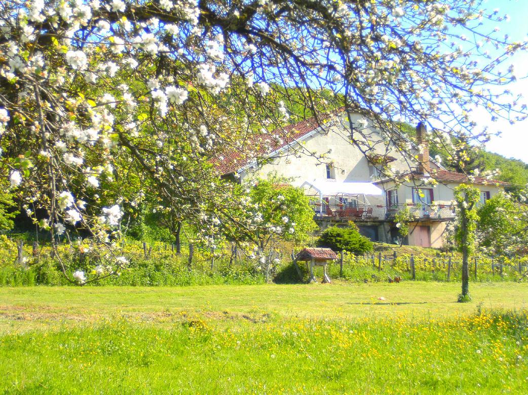 4 dagen wandelen in de Haute Saône